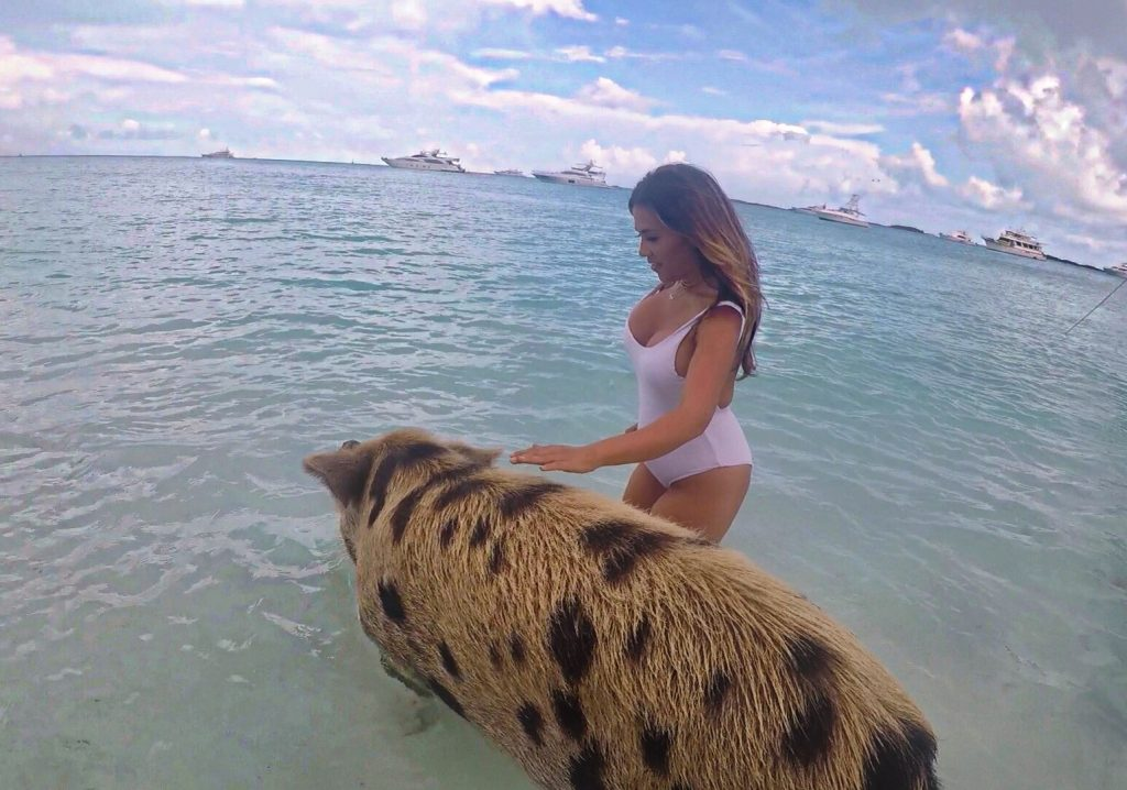 How To Swim With Pigs In The Bahamas Solo Female Travel Blog Suzie Agelopoulos